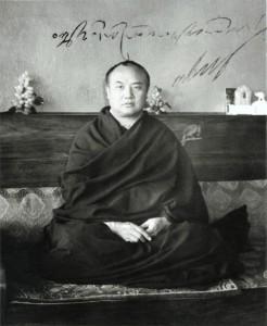 Il XVI Gyalwa Karmapa